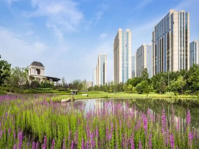 北京和裕·尚峯壹號楼盘地址在哪?