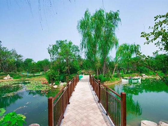 碧桂园·十里花海